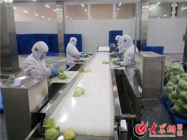 山东首鲜蔬果有限公司的净菜加工车间图片